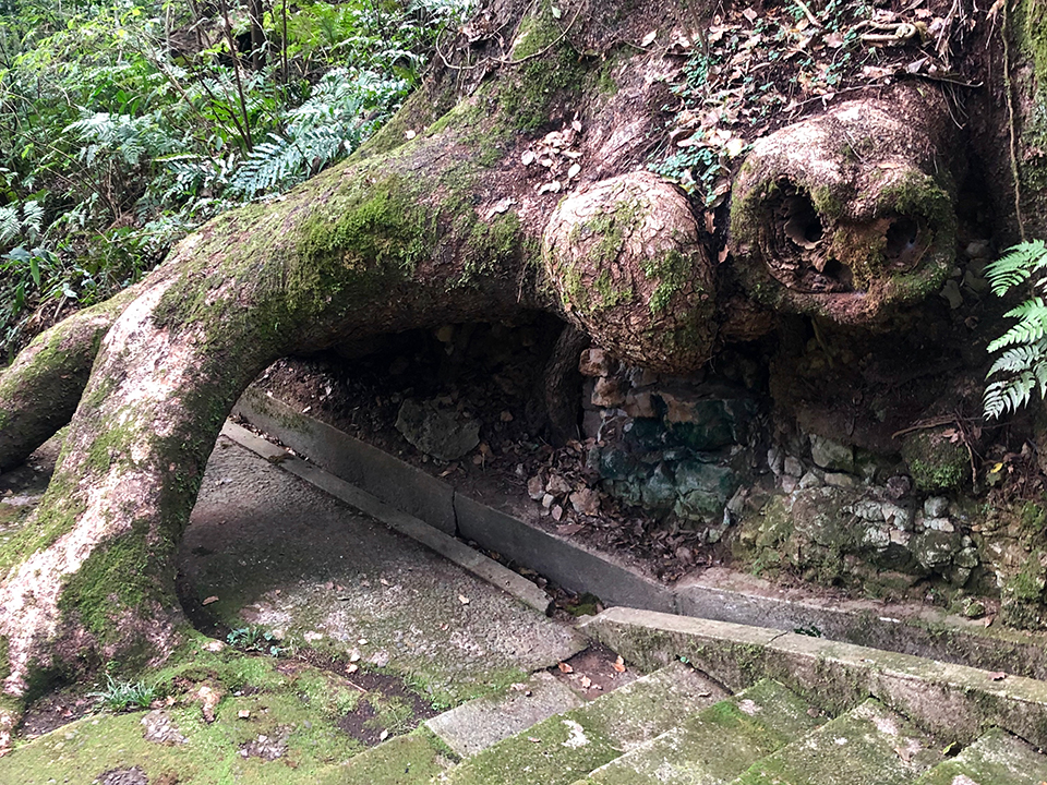 薩摩川内の神話について調べてみよう!