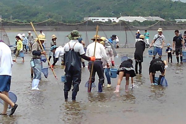 建て網干し漁