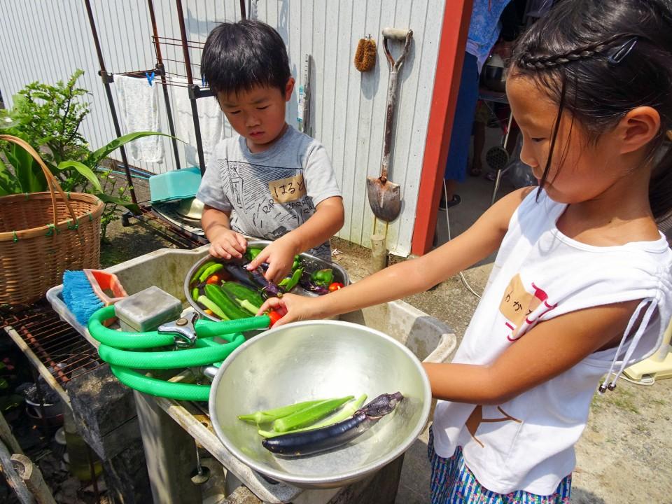デイキャンプ野菜を洗う