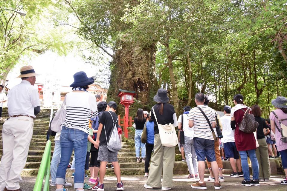 新田神社や可愛山陵などがある神亀山を探検02